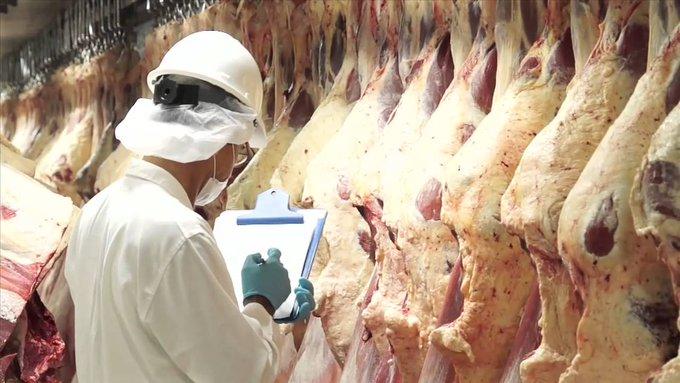 Chubut impulsa la comercialización de carnes de frigoríficos provinciales en cadenas de supermercados